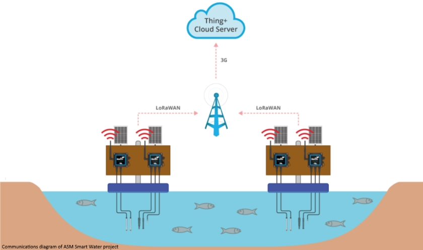IoT system reduces fish death rate at Iran farm | IOT NETWORK NEWS