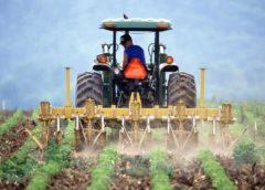 Nokia IoT agriculture