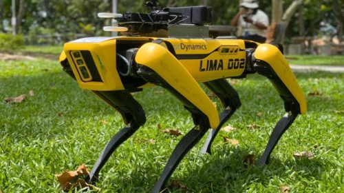 Singapore pilots robot dog to assist safe distancing in parks
